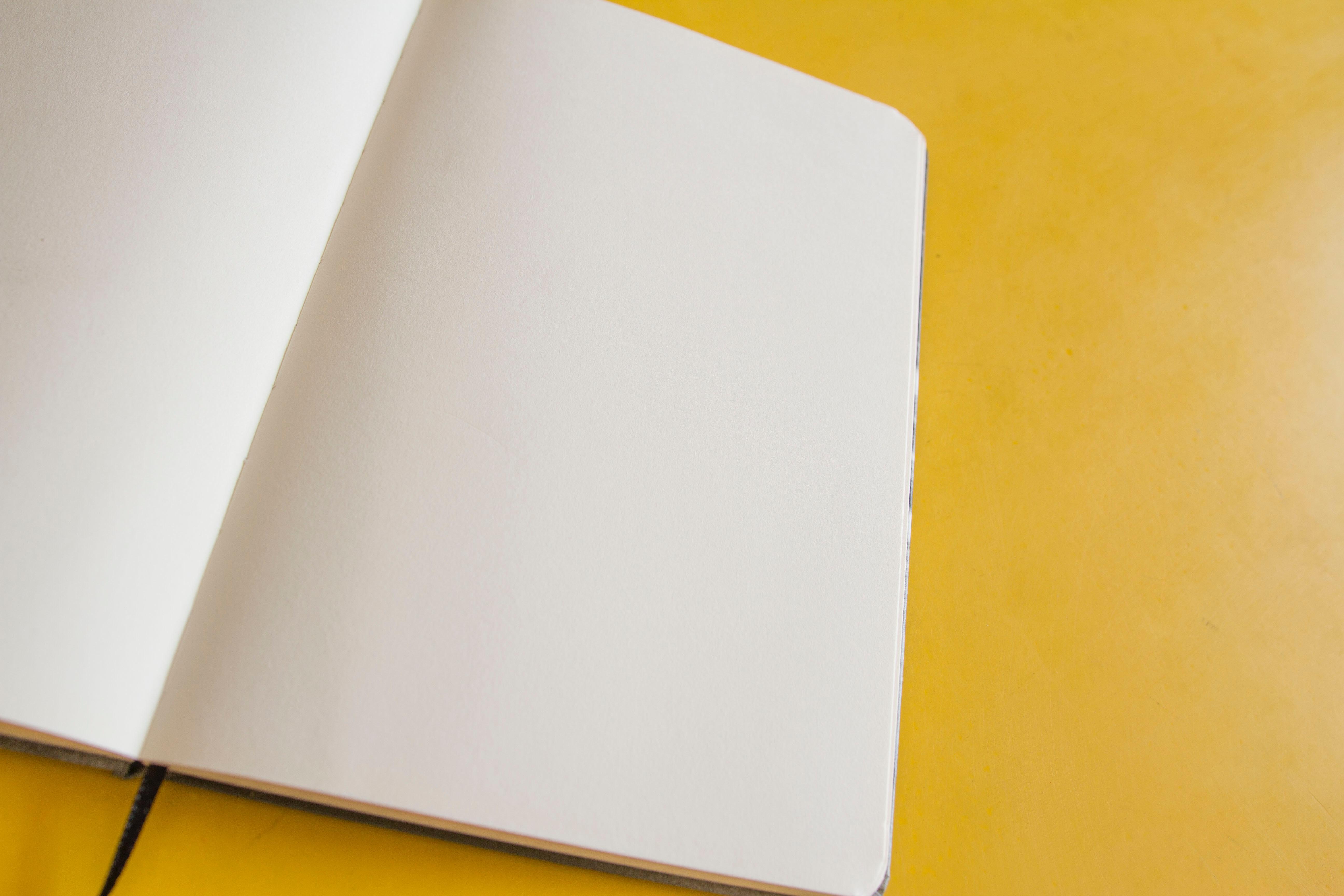 Weiße Liste der Mehrwertsteuerzahler – die wichtigsten Informationen